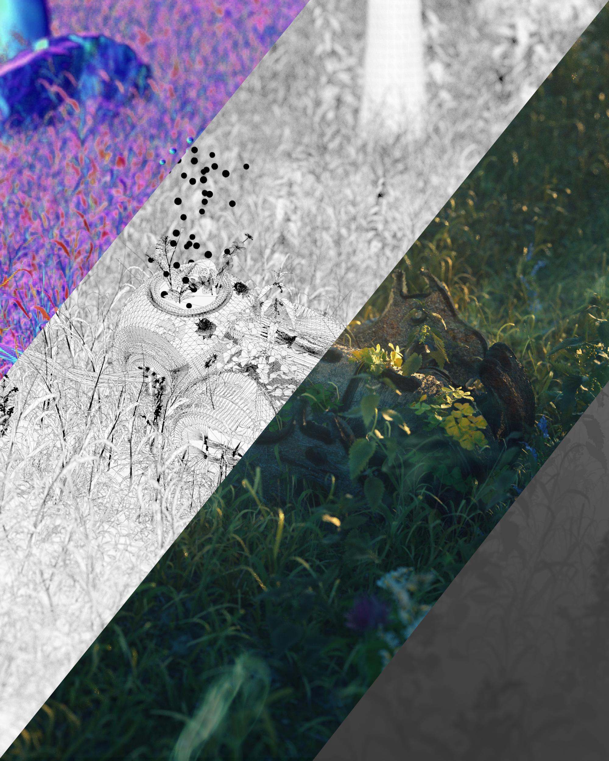 Grass_info.jpg