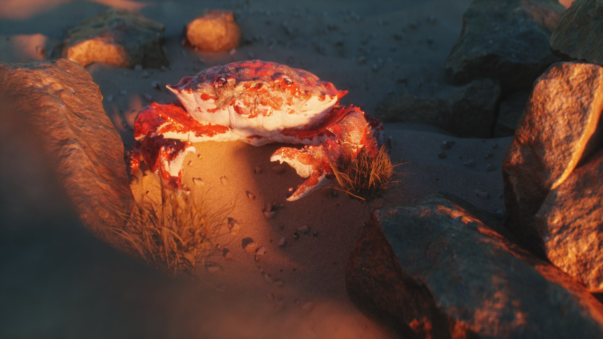 Untitled Project_Crab_MyPrecoius_CC_title_2018-01-16_22.20.13.png